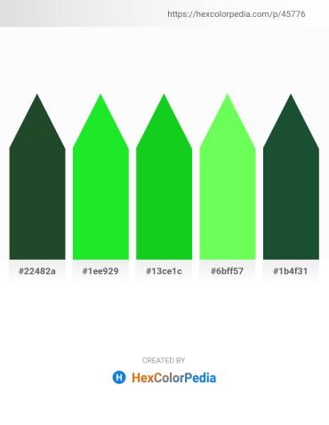 Palette image download - Dark Slate Gray – Lime Green – Lime – Green Yellow – Light Steel Blue