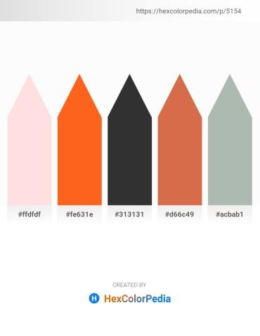 Palette image download - Misty Rose – Orange Red – Black – Peru – Dark Sea Green