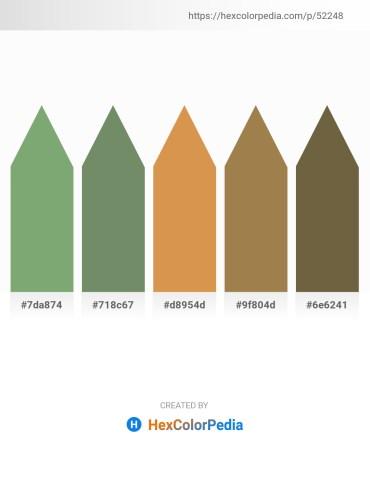 Palette image download - Dark Sea Green – Dark Sea Green – Peru – Dark Khaki – Dark Olive Green