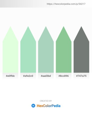 Palette image download - Honeydew – Powder Blue – Dark Sea Green – Dark Sea Green – Slate Gray