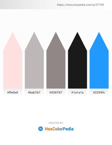 Palette image download - Misty Rose – Silver – Gray – Black – Dodger Blue