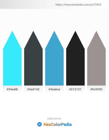 Palette image download - Aqua – Dark Slate Gray – Hot Pink – Black – Dark Gray