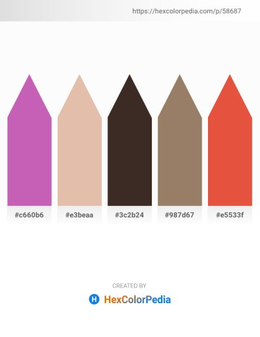 Palette image download - Orchid – Burlywood – Alice Blue – Gray – Chocolate