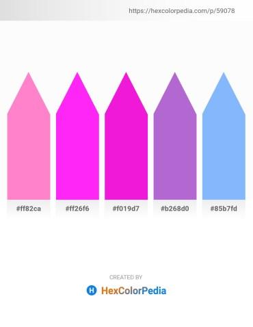 Palette image download - Hot Pink – Magenta – Magenta – Medium Orchid – Light Sky Blue