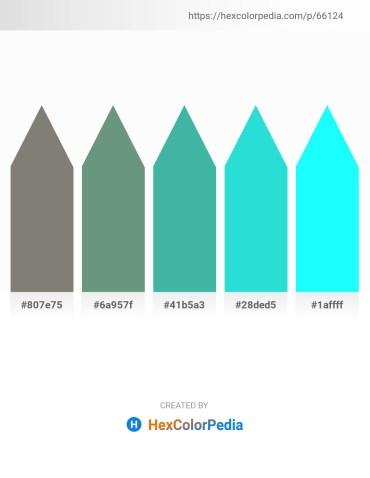 Palette image download - Gray – Cadet Blue – Medium Sea Green – Turquoise – Aqua
