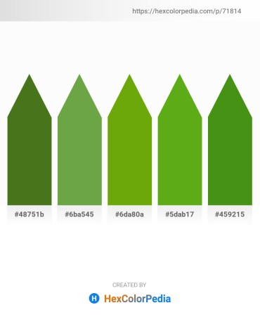 Palette image download - Olive Drab – Medium Sea Green – Olive – Olive Drab – Olive Drab