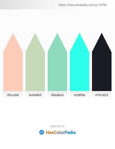 Palette image download - Peach Puff – Dark Sea Green – Medium Aquamarine – Aqua – Black