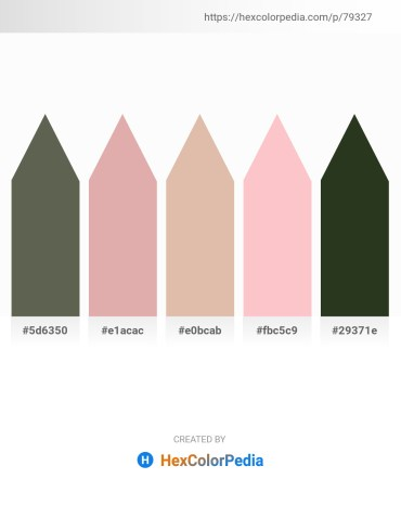 Palette image download - Dim Gray – Tan – Tan – Pink – Dark Olive Green