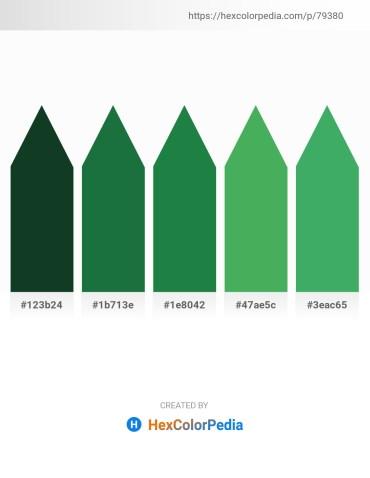 Palette image download - Blue – Forest Green – Forest Green – Medium Sea Green – Medium Sea Green