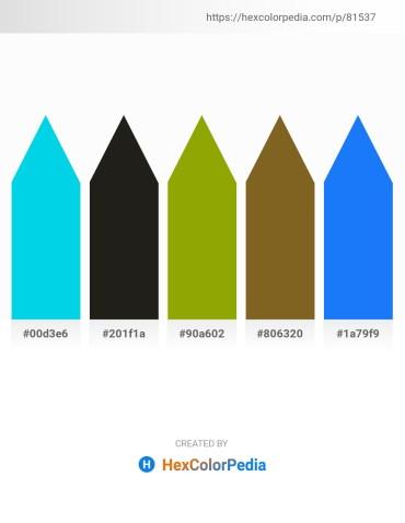Palette image download - Dark Turquoise – Black – Olive – Sienna – Dodger Blue