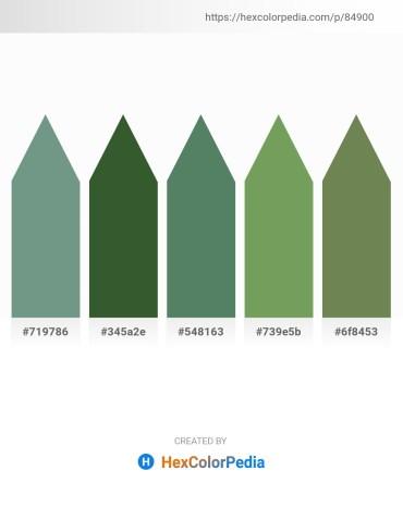 Palette image download - Cadet Blue – Dark Olive Green – Cadet Blue – Dark Sea Green – Dark Olive Green