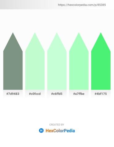 Palette image download - Light Slate Gray – Pale Green – Honeydew – Pale Green – Light Green