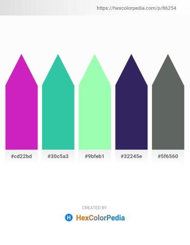 Palette image download - Medium Violet Red – Light Sea Green – Pale Green – Midnight Blue – Slate Gray
