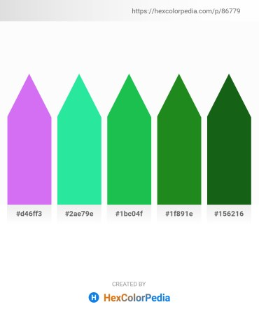 Palette image download - Medium Slate Blue – Turquoise – Lime Green – Forest Green – Forest Green