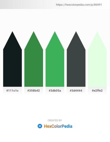 Palette image download - Dark Slate Gray – Sea Green – Medium Sea Green – Dark Slate Gray – Honeydew