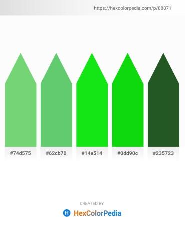 Palette image download - Medium Aquamarine – Medium Sea Green – Lime – Lime – Dark Olive Green
