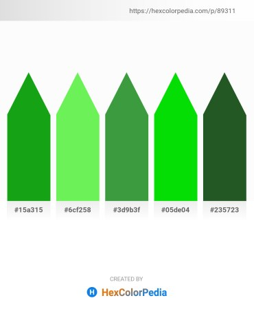 Palette image download - Forest Green – Light Green – Sea Green – Lime – Dark Olive Green