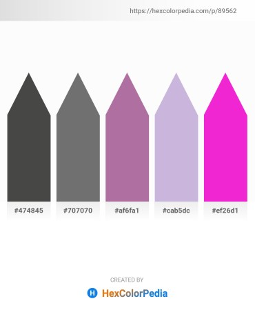 Palette image download - Dim Gray – Dim Gray – Rosy Brown – Light Steel Blue – Magenta