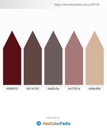 Palette image download - Aqua – Dim Gray – Dim Gray – Rosy Brown – Tan