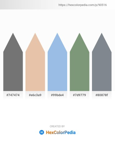 Palette image download - Dim Gray – Burlywood – Light Blue – Dark Sea Green – Slate Gray