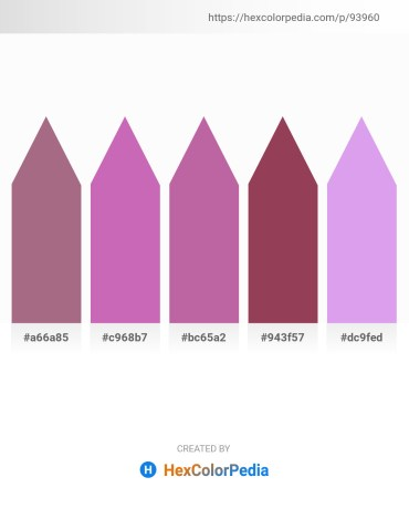 Palette image download - Rosy Brown – Orchid – Rosy Brown – Rosy Brown – Salmon