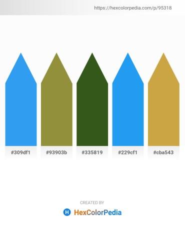 Palette image download - Dodger Blue – Olive Drab – Forest Green – Dodger Blue – Peru