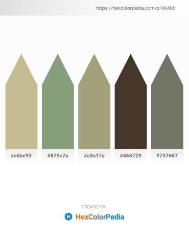 Palette image download - Tan – Dark Sea Green – Goldenrod – Beige – Dim Gray