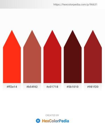 Palette image download - Orange Red – Sienna – Firebrick – Tomato – Firebrick