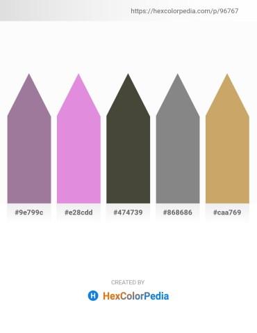 Palette image download - Rosy Brown – Orchid – Dark Olive Green – Gray – Dark Khaki