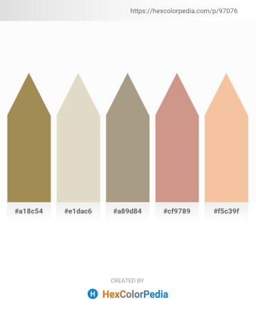 Palette image download - Dark Khaki – Tan – Rosy Brown – Tan – Wheat