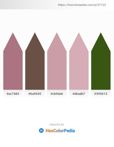 Palette image download - Rosy Brown – Dim Gray – Rosy Brown – Thistle – Forest Green