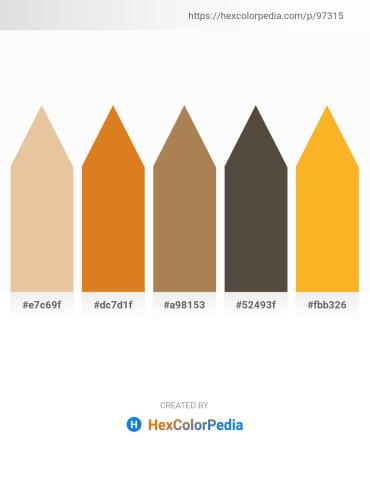 Palette image download - Burlywood – Chocolate – Dark Sea Green – Dim Gray – Orange