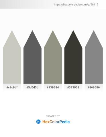 Palette image download - Silver – Dim Gray – Gray – Dim Gray – Gray