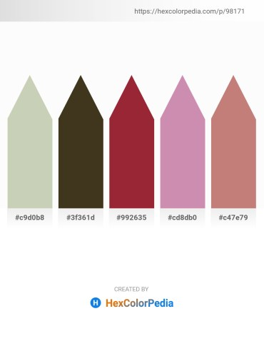Palette image download - Dark Sea Green – Navajo White – Brown – Plum – Rosy Brown