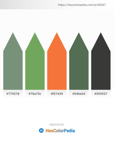 Palette image download - Dark Sea Green – Dark Sea Green – Tomato – Dark Slate Gray – Dim Gray