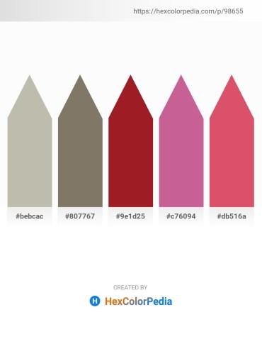 Palette image download - Silver – Dim Gray – Firebrick – Pale Violet Red – Indian Red