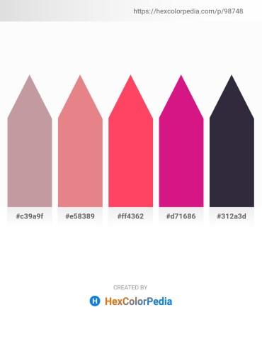 Palette image download - Rosy Brown – Dark Salmon – Tomato – Medium Violet Red – Dim Gray