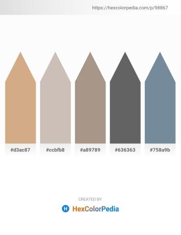 Palette image download - Tan – Silver – Rosy Brown – Dim Gray – Light Slate Gray