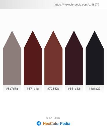 Palette image download - Gray – Brown – Sienna – Light Steel Blue – Rosy Brown