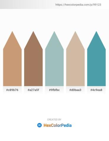 Palette image download - Tan – Rosy Brown – Dark Sea Green – Tan – Steel Blue