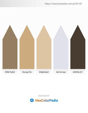 Palette image download - Gray – Tan – Tan – Light Steel Blue – Brown