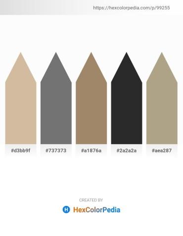 Palette image download - Tan – Dim Gray – Rosy Brown – Black – Rosy Brown