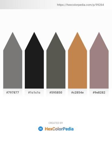 Palette image download - Gray – Black – Dim Gray – Peru – Gray