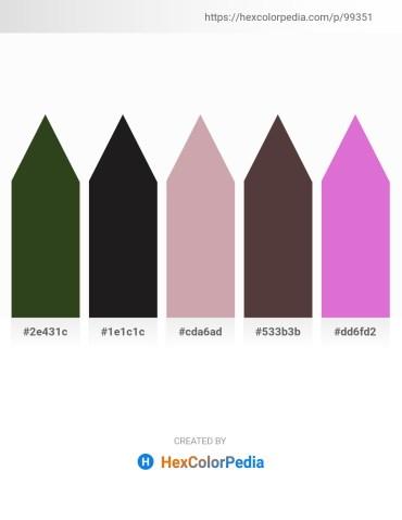 Palette image download - Dark Olive Green – Black – Rosy Brown – Dim Gray – Orchid