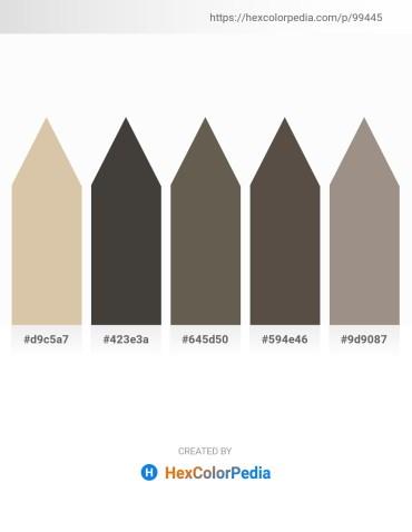 Palette image download - Tan – Dim Gray – Dim Gray – Dim Gray – Gray