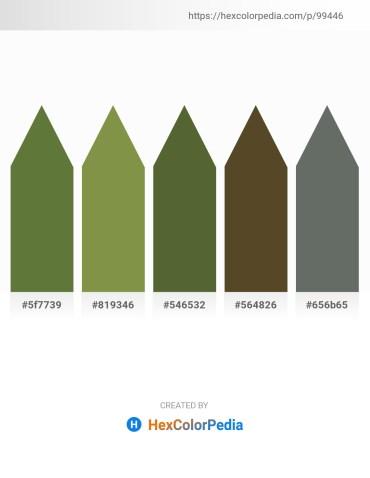 Palette image download - Dark Olive Green – Dark Olive Green – Dark Olive Green – Dark Olive Green – Slate Gray