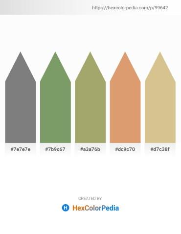 Palette image download - Gray – Dark Sea Green – Dark Khaki – Burlywood – Tan