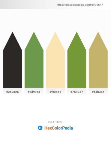Palette image download - Black – Dark Olive Green – Moccasin – Olive Drab – Dark Khaki