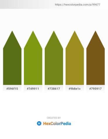 Palette image download - Olive Drab – Olive Drab – Olive Drab – Olive Drab – Saddle Brown