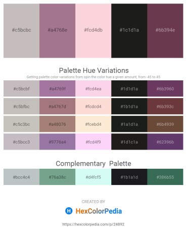 Palette image download - Silver – Rosy Brown – Misty Rose – Black – Slate Gray